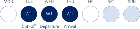 Air consol from Amsterdam to Dubai (priority service option 1)