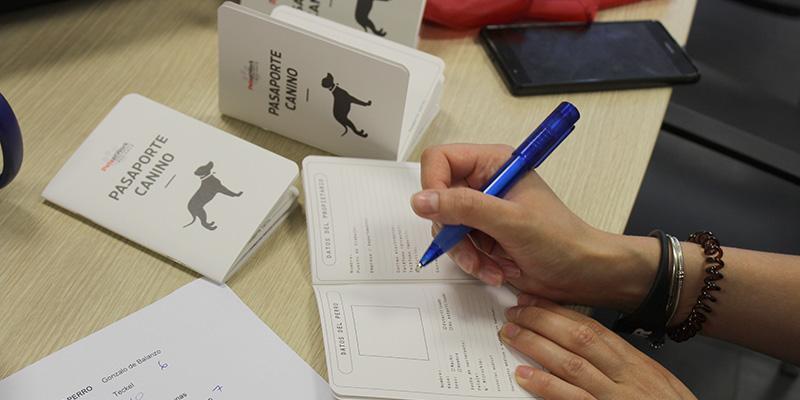dia internacional llevar perro trabajo pasaporte oficina dsv rubi