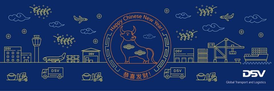 Año Nuevo Chino 2021 | DSV