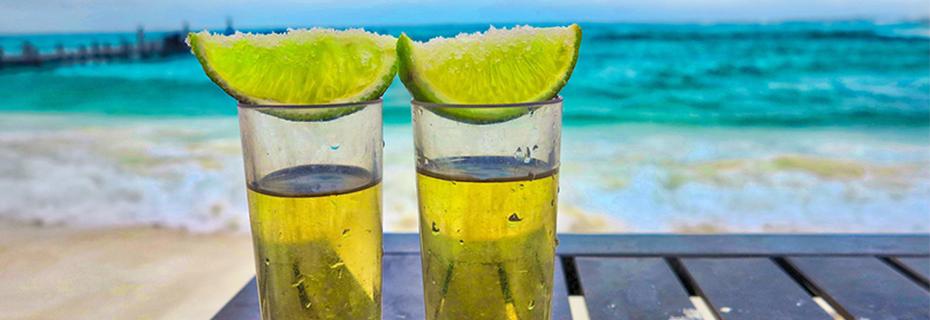 Tequila exportacion Mexico