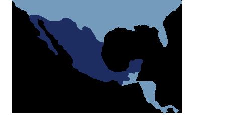 DSV Mexico