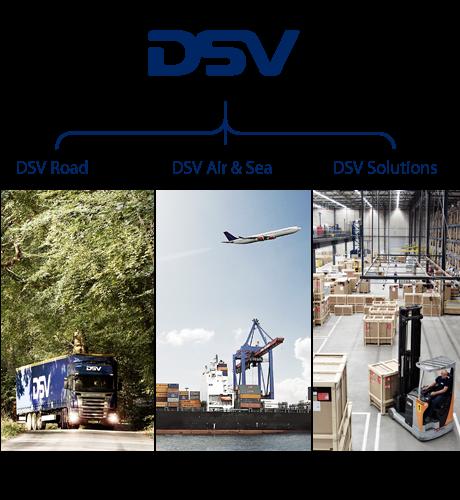 Estructura del grupo DSV