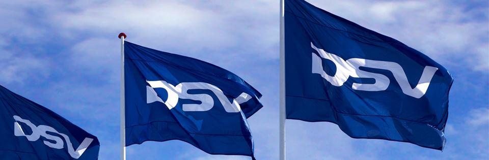 DSV 2018 Annual Report Released