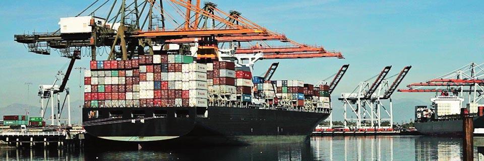 Kuwait Municipality has updated import requirements | DSV