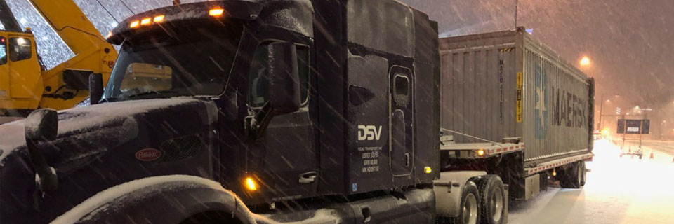 DSV delivers 110-foot-tall tree and some Christmas cheer to Denver