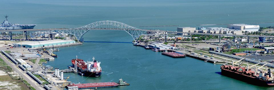 "Port of the Month: Corpus Christi and ""A Tree for All"""