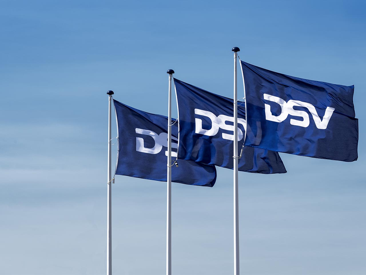 DSV Protect Terms