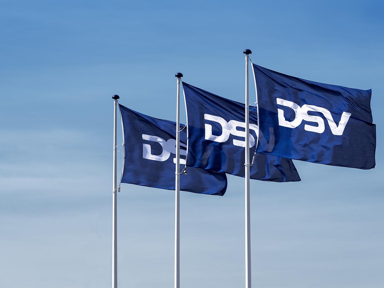 DSV Protect Terms