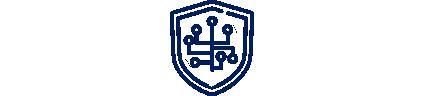 DSV connectivity secure