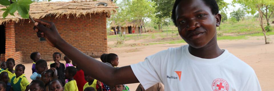 DSV Panalpina supports Danish Red Cross' international projects