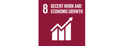 UN sustainability goal 8