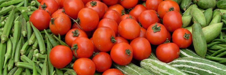 perishables tomatoes