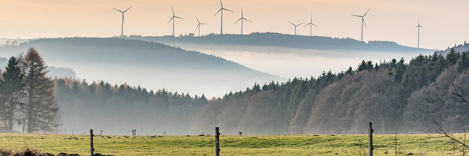 energia renovable dsv