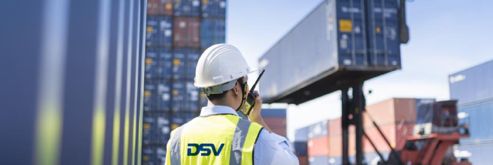 DSV Insurance webinar